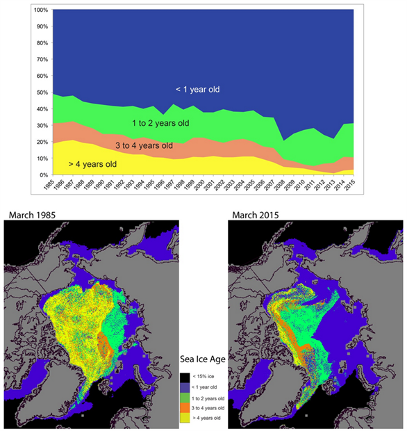 Time series of sea ice age and maps of sea ice age