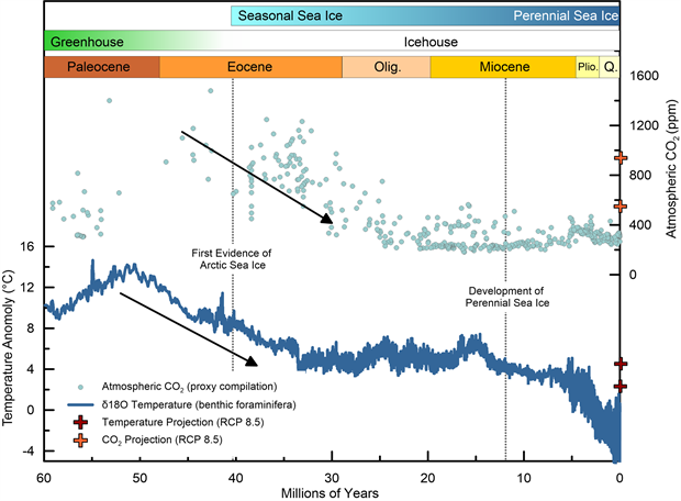 Global bottom water temperature and atmospheric CO2 records spanning the last 60 million years