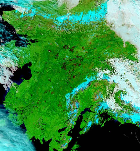 MODIS false color image of Alaska on September 1, 2015, showing burn scars