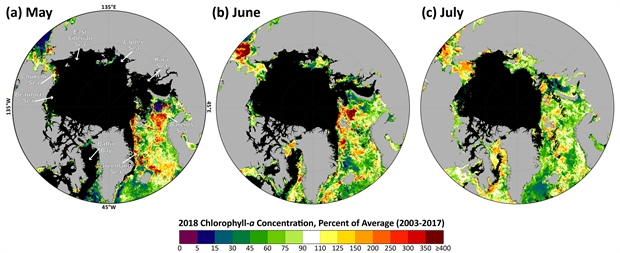 Map of mean monthly chlorophyll-a concentrations during 2018