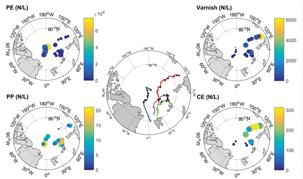 Maps of back trajectories of the modelled ice cores