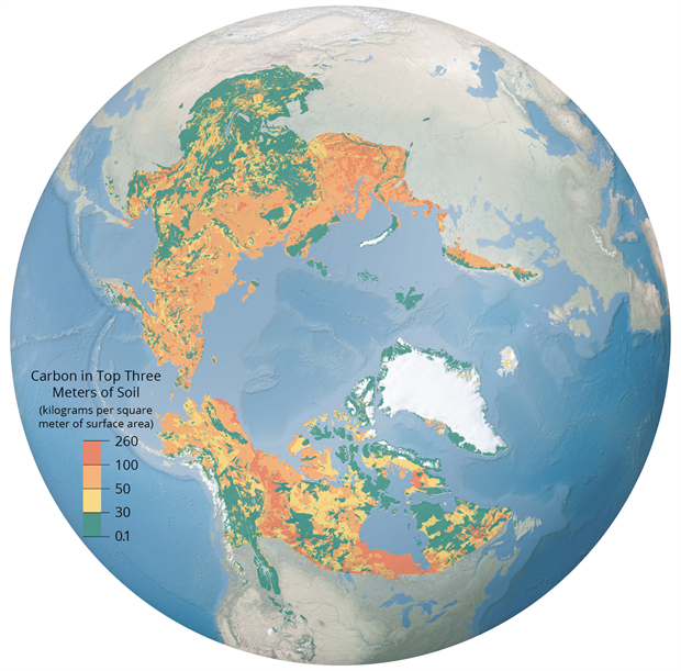 Global map of soil organic carbon pools