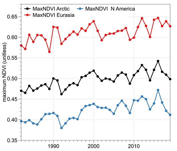 Graph of MaxNDVI during 1982–2019