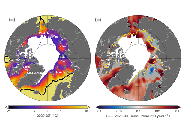 Maps of sea surface temperatures