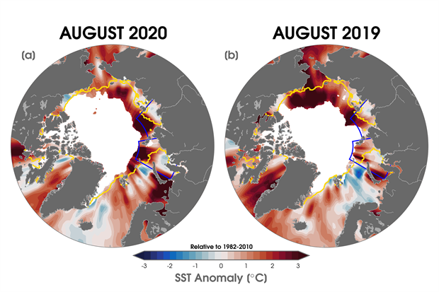 Maps of sea surface temperature anomalies