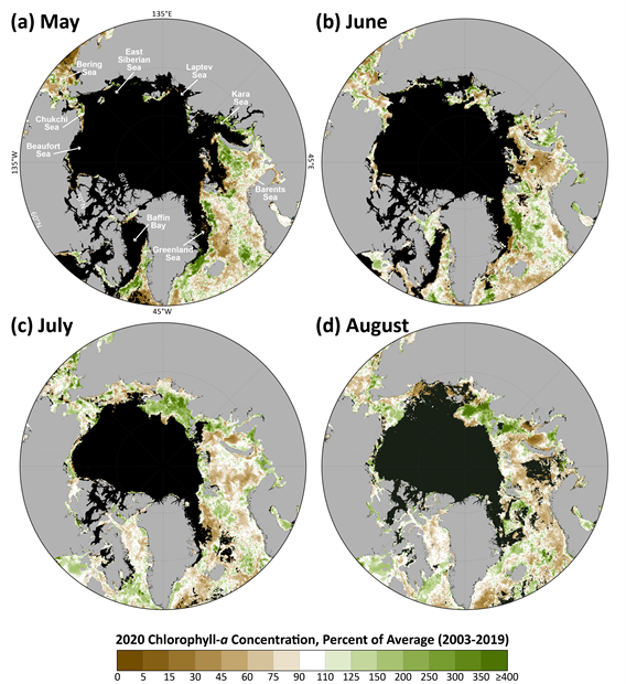 Map of mean monthly chlorophyll-a concentrations
