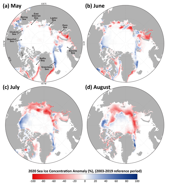 Map of sea ice concentration anomalies